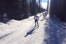 Laponia 2014