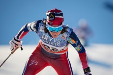 FIS Nordic World Cup