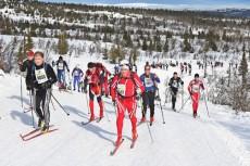 Birkebeinerrennet-cross-country-ski-Norway_740