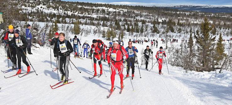 Birkebeinerrennet-cross-country-ski-Norway_740