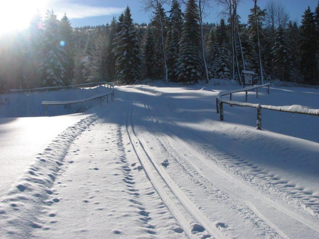 ustjanowa-trasa-biegowa-2