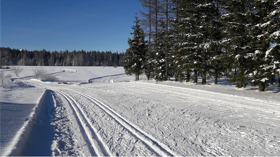 koscielisko-trasa-biegowa